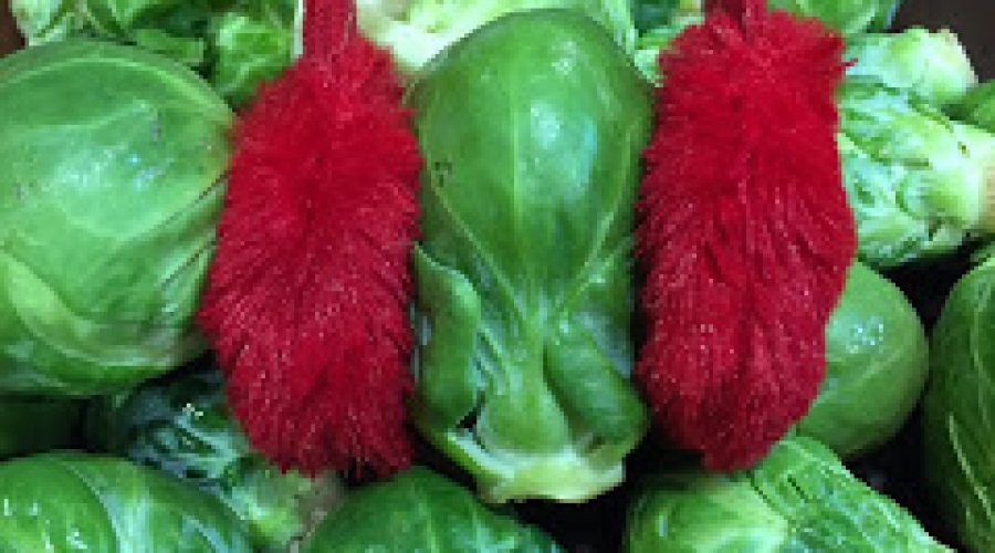 Lose Weight with Ruth: Hate Vegetables? You'll Love These!